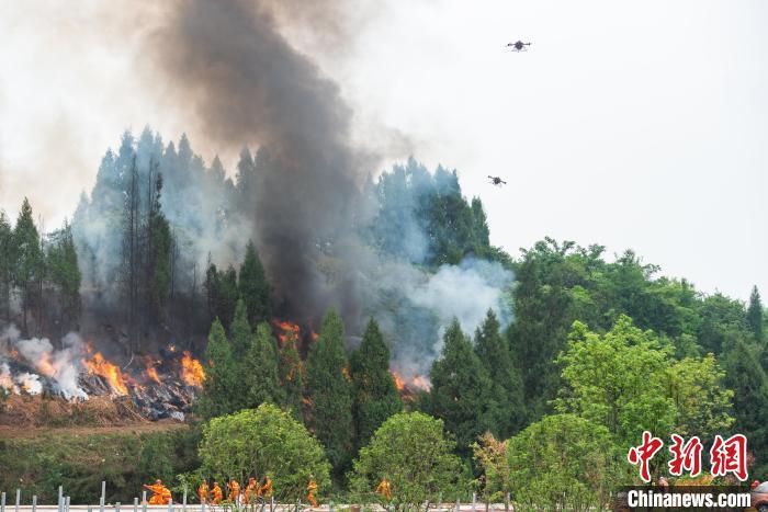 图为森林灭火演练现场,灭火无人机在空中协助灭火。 何蓬磊 摄