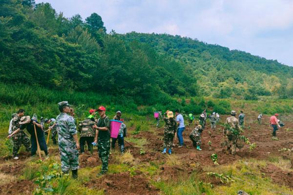 党员带头添新绿 植树造林做先锋