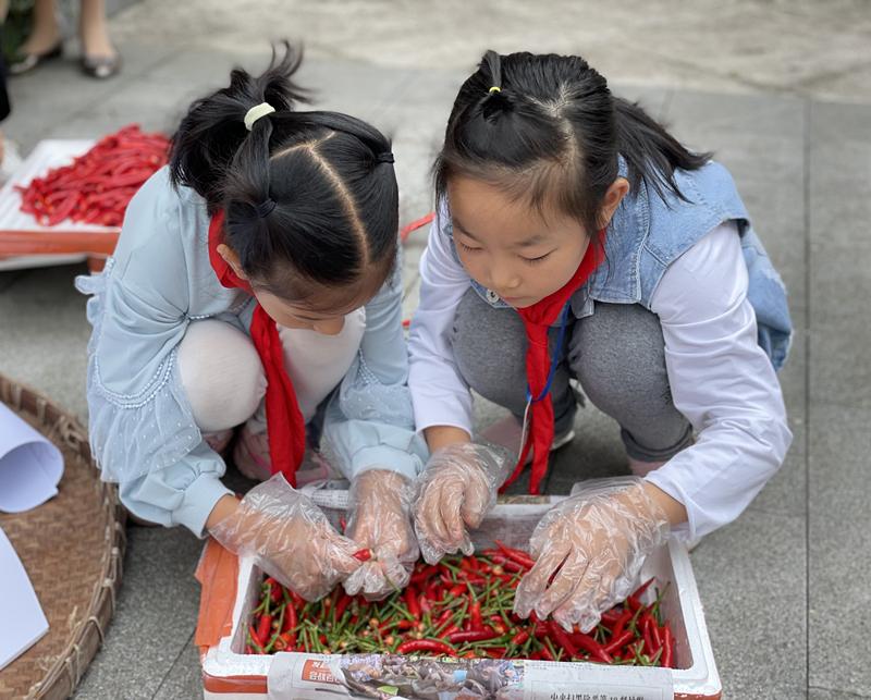 """安徽黄山:开展""""世界粮食日""""主题教育活动 爱惜粮食从娃娃抓起"""